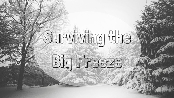Surviving the Big Freeze